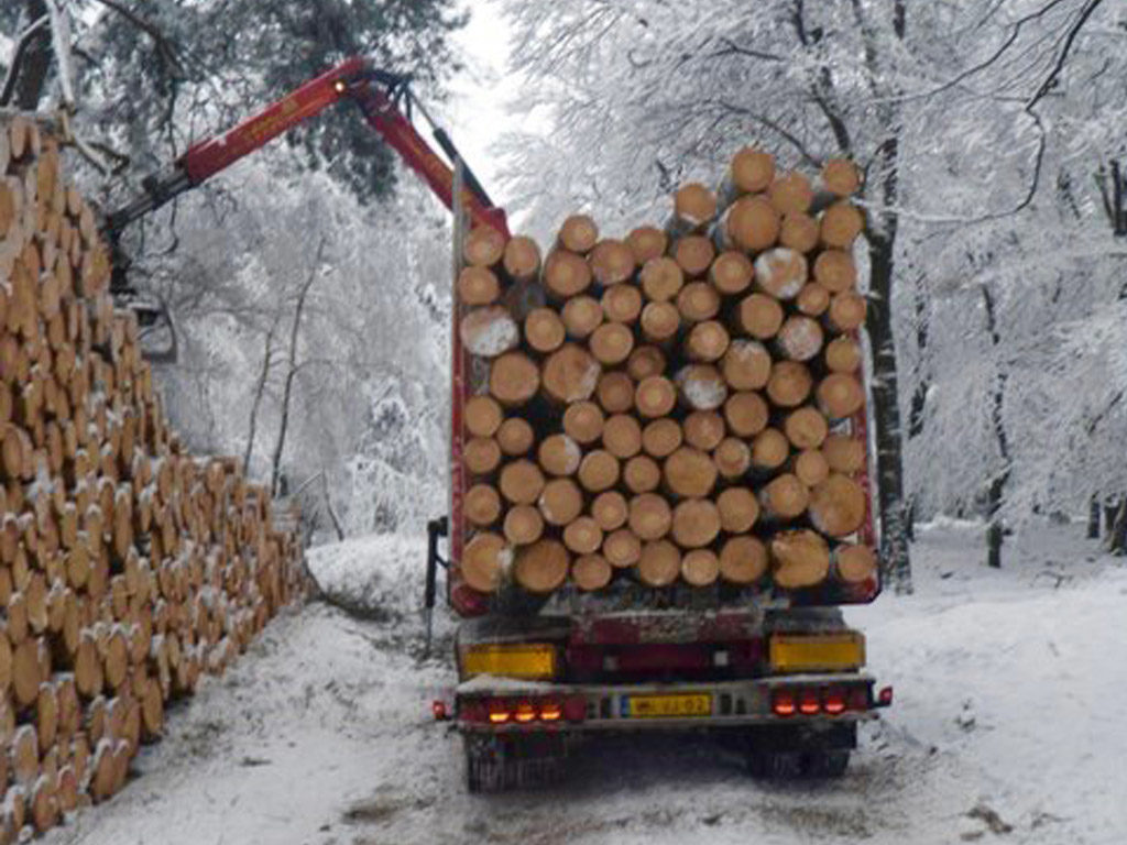 rondhout transport